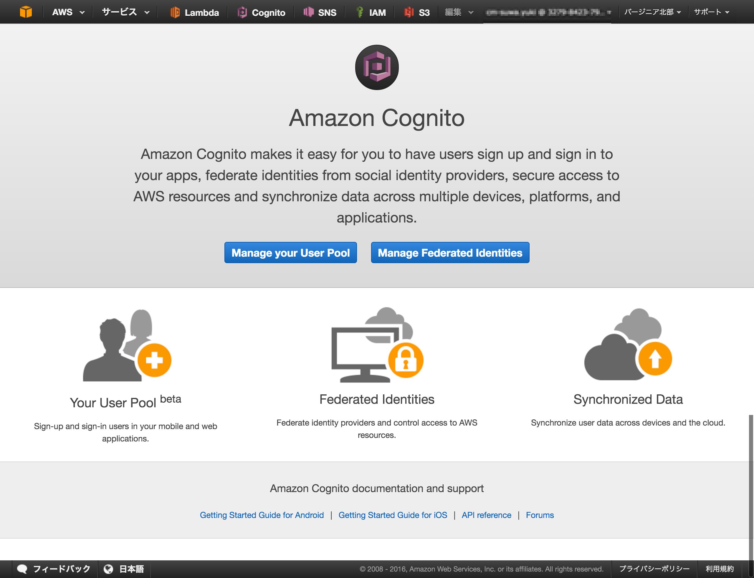 cognito01